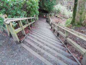Rouken Glen steps